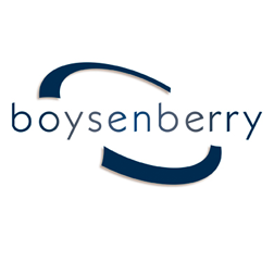logo boysenberry, delvorm